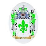 Motley Oval Ornament