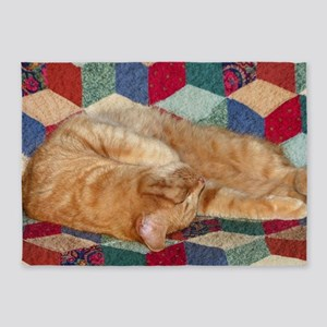 Cat Napping 5'x7'Area Rug
