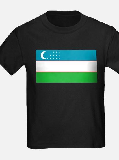 Uzbekistan Blank Flag T