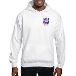 Morys Hooded Sweatshirt