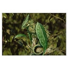 Earth Leaf Dragon Posters
