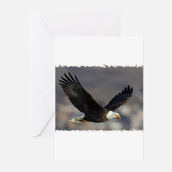 Cute Bald eagle Greeting Cards (Pk of 20)