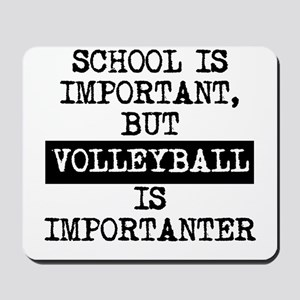 Volleyball Is Importanter Mousepad