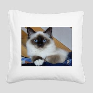 birman 2 Square Canvas Pillow
