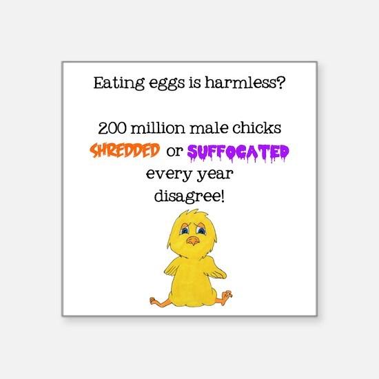 Eggs Harmless: Male Chicks Disagree Sticker