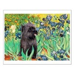 MP-IRISES-Cairn-BR17 Small Poster