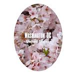 Washington DC Oval Ornament