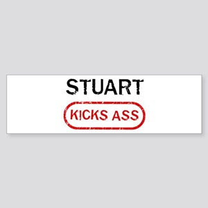 STUART kicks ass Bumper Sticker