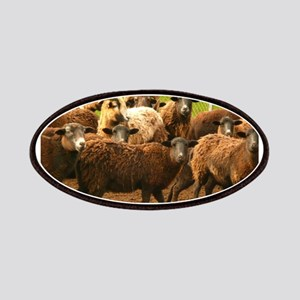 herd of brownish sheep Patch