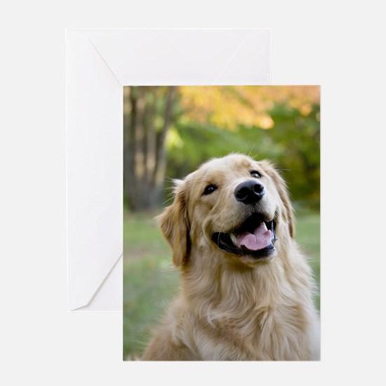 Cool Photography art Greeting Card