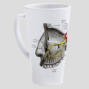 Maxillary Nerves Labeled 17 oz Latte Mug