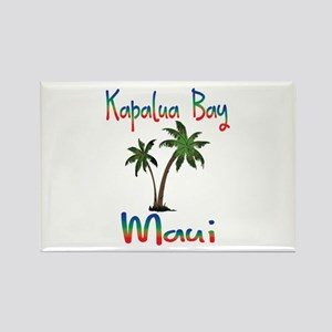 Kapalua Bay Maui Magnets