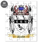 Nicollet Puzzle