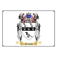 Nicolini Banner