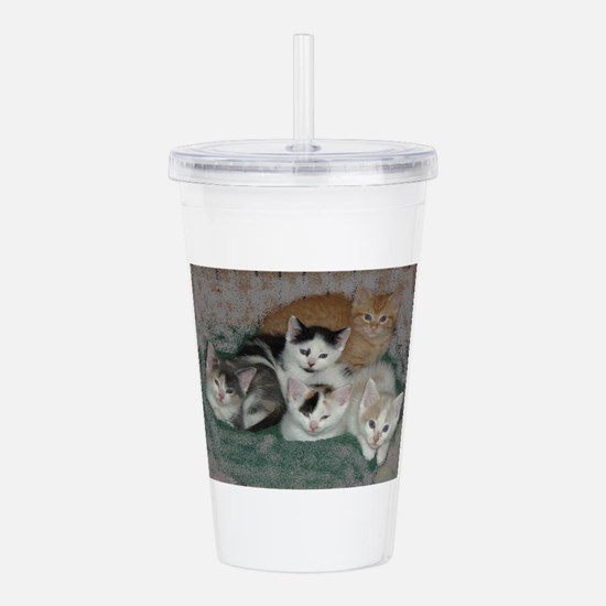 Lots of Kittens Acrylic Double-wall Tumbler