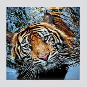 Tiger in Water Tile Coaster