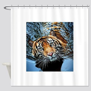Tiger in Water Shower Curtain