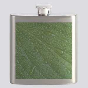 GREEN LEAF DROPS Flask