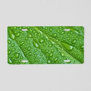 GREEN LEAF DROPS Aluminum License Plate