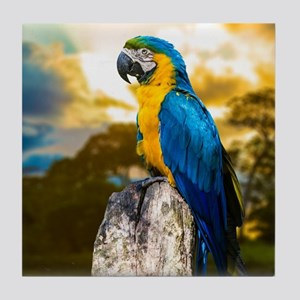 Beautiful Blue And Yellow Parrot Tile Coaster