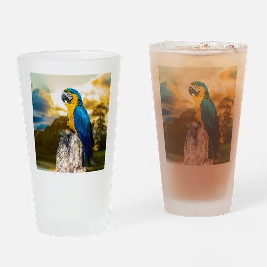 Beautiful Blue And Yellow Parrot Drinking Glass