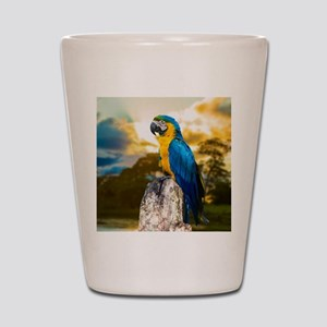 Beautiful Blue And Yellow Parrot Shot Glass