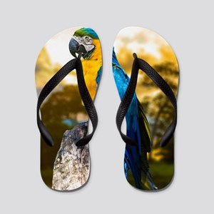 Beautiful Blue And Yellow Parrot Flip Flops