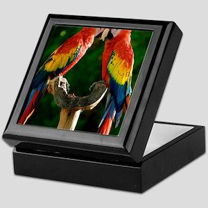 Beautiful Parrots Keepsake Box