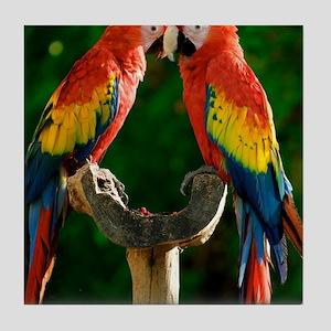 Beautiful Parrots Tile Coaster