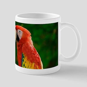 Beautiful Parrots Mugs