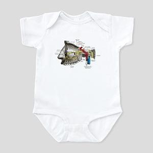 Maxillary Nerves Labeled Baby Light Bodysuit