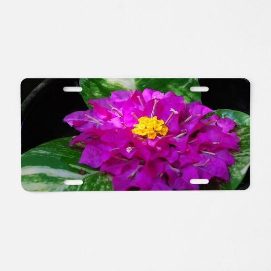 Cool Lilypad Aluminum License Plate