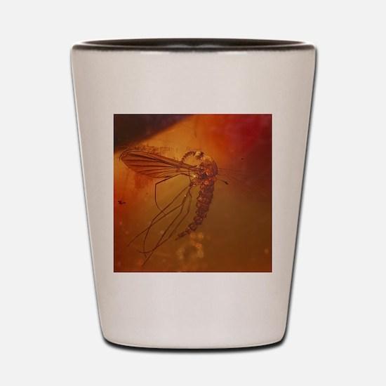 MOSQUITO IN AMBER Shot Glass