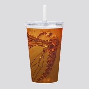 MOSQUITO IN AMBER Acrylic Double-wall Tumbler