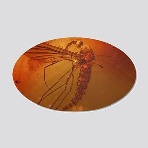 MOSQUITO IN AMBER 20x12 Oval Wall Decal
