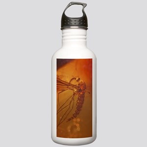 MOSQUITO IN AMBER Stainless Water Bottle 1.0L