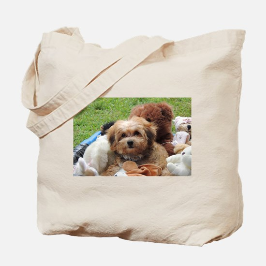 Copper the Havapookie Tote Bag