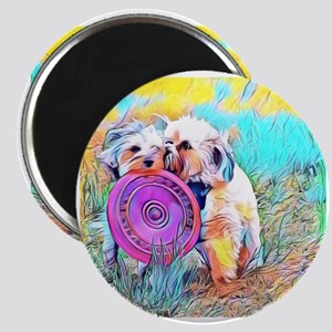 Frisbee Play with two dogs Magnets