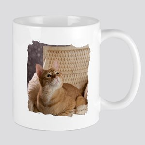 Loki In Basket 1 Mug Mugs