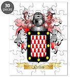 Nellis Puzzle