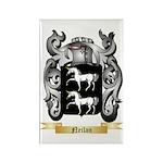 Neilan Rectangle Magnet (100 pack)