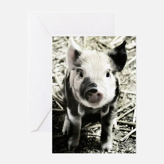 Livestock Greeting Card
