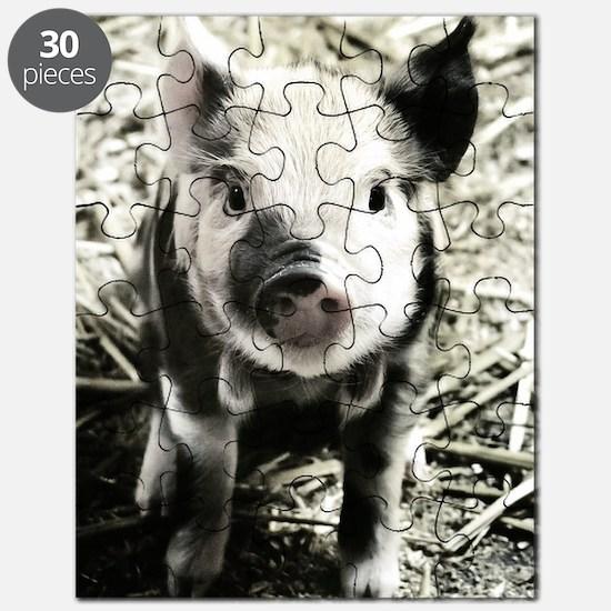 Unique Pork Puzzle