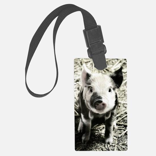 Cute Pork Luggage Tag
