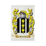 Naylar Rectangle Magnet (10 pack)