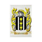 Naylar Rectangle Magnet (100 pack)
