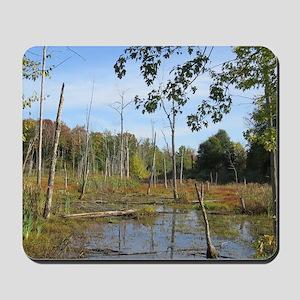 Swamp Scenery Mousepad