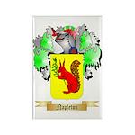 Napleton Rectangle Magnet (100 pack)