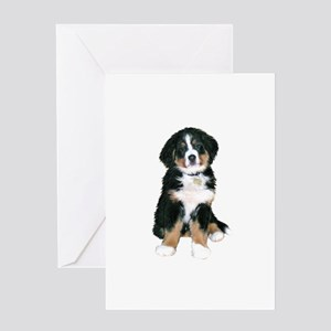 Bernese MD Puppy Greeting Card