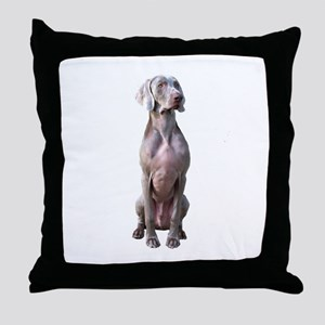 Weimaraner (alert sit) Throw Pillow